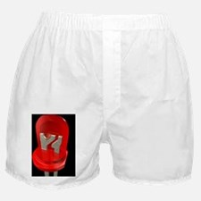 Light-emitting diode Boxer Shorts