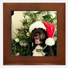 Bo the Dog Framed Tile