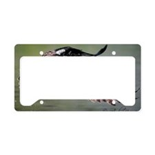 Wild Wings Photography License Plate Holder