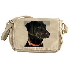 shelby Messenger Bag