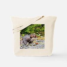 9 x 12 print Tote Bag