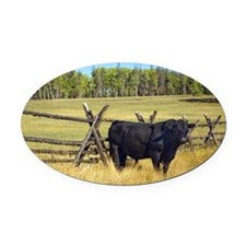 Lone Cow Oval Car Magnet