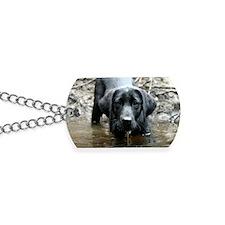 Victor Dog Tags