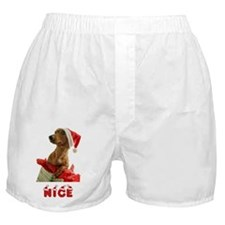Nice Dachshund Boxer Shorts