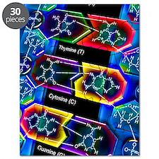 DNA molecule Puzzle
