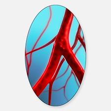 Arteries, artwork Sticker (Oval)