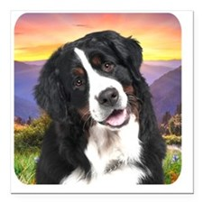 """meadow Square Car Magnet 3"""" x 3"""""""