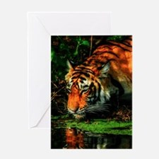 Bengal Reflection Greeting Card