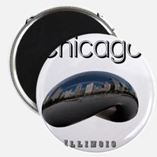 Chicago_10x10_Bean Magnet