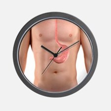 Healthy stomach, artwork Wall Clock