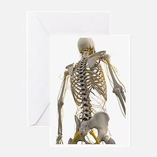 Human nervous system, artwork Greeting Card