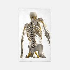 Human nervous system, artwork 3'x5' Area Rug
