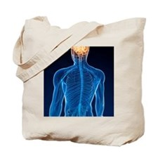 Human nervous system, artwork Tote Bag
