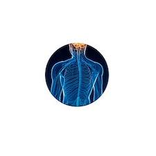 Human nervous system, artwork Mini Button