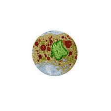 Macrophage cell, TEM Mini Button