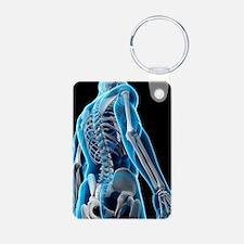 Upper body bones, artwork Keychains