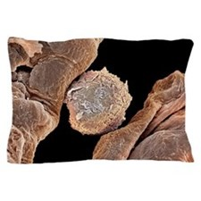 Macrophage cell in lung, SEM Pillow Case