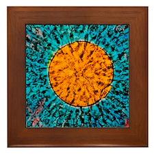 Mature human egg Framed Tile