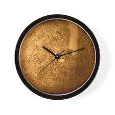 Mariner 10 mosaic of Mercury Wall Clock