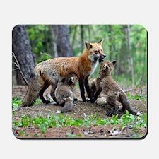 10x10_Infant_blanket Mousepad