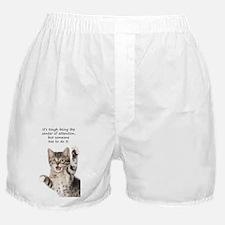 Snap Boxer Shorts
