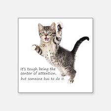 "Kitten Square Sticker 3"" x 3"""