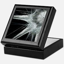 Nerve cell, abstract artwork Keepsake Box