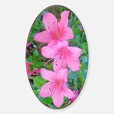 Pink Azalea Decal