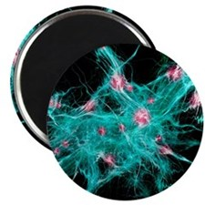 Neural network, abstract artwork Magnet