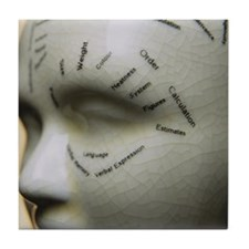Phrenology head Tile Coaster