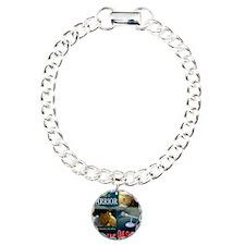 2012 Classic Ask The Pas Bracelet