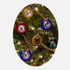 Bulldog Ornament Christmas Holiday C Oval Ornament