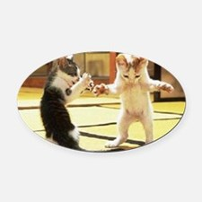 Kung Fu Kittens Oval Car Magnet