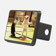 Kung Fu Kittens Hitch Cover