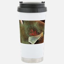 Bacteria in the nose, S Travel Mug