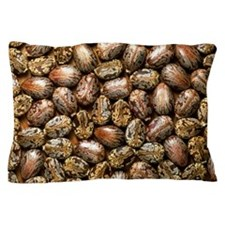 Seeds of the castor oil plant Pillow Case