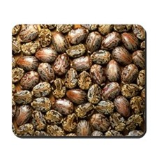Seeds of the castor oil plant Mousepad