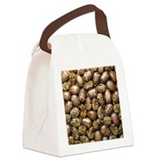 Seeds of the castor oil plant Canvas Lunch Bag