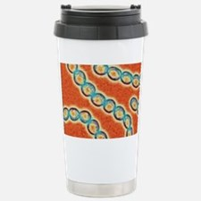 Chains of Streptococcus Stainless Steel Travel Mug