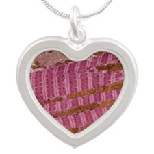 Skeletal muscle fibre, TEM Silver Heart Necklace