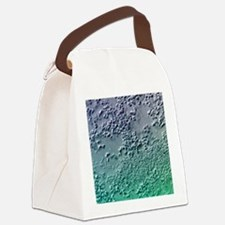 Bacterial biofilm, light microgra Canvas Lunch Bag