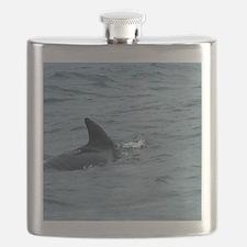 Pilot Whale#2 off Cape Breton Island Large P Flask