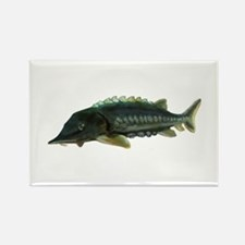 Green Sturgeon Rectangle Magnet