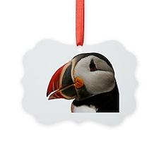 Puffin Portrait Picture Ornament