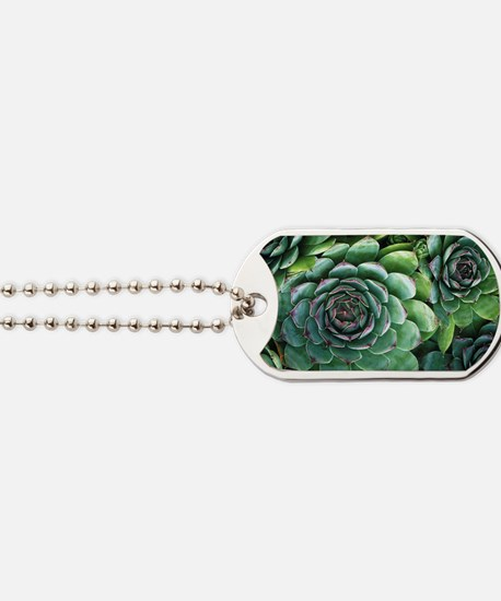'Hens and chicks' succulents Dog Tags