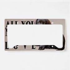 lb_car_flag_713_H_F License Plate Holder