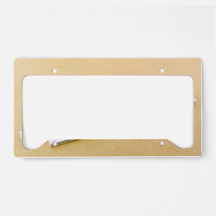 Logarithmic slide rule License Plate Holder