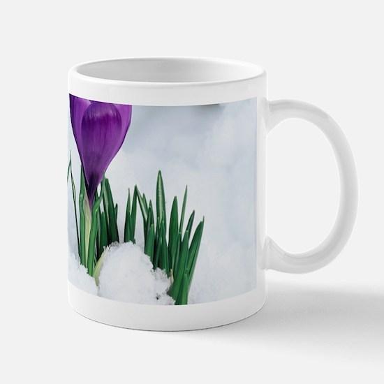 Crocus flower in the snow Mug