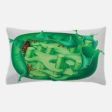 Cutaway illustration of plant chloropl Pillow Case