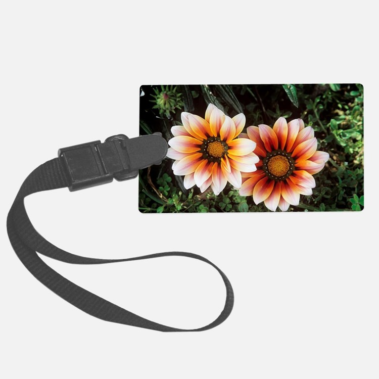 Gazania (Gazania splendens) Luggage Tag